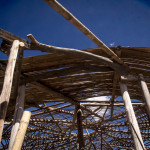 20150804-IMG_2789 - Outer Roof Bamboo07